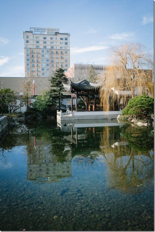 100T- Chinese Garden-0007