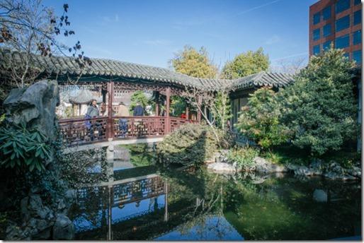 100T- Chinese Garden-0008